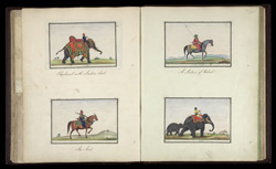 Elephant with a howdah (top left), An Arab on Horseback (bottom left), An Afghan on Horseback (top right), An Elephant with its young (bottom right)